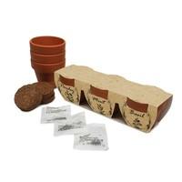 Zestaw ziołowy, 3 doniczki i nasiona