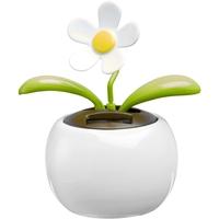 Doniczka z kwiatkiem